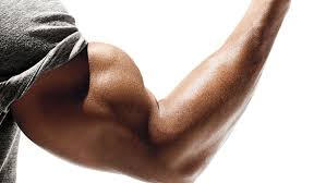 Top Start bursting out of your sleeves with this bicep workout