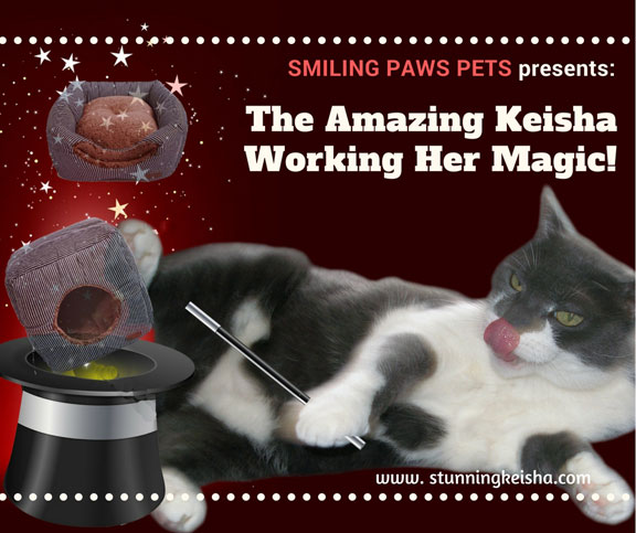 Smiling Paws Pets Presents the Amazing Keisha Working Her Magic! #giveaway