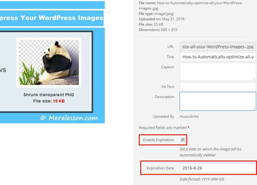 set expiration date for WordPress