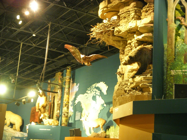 Cleveland Natural History Museum
