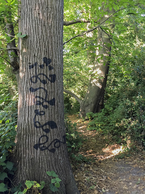 Graffitied tree.  Walk round the Hawkwood Estate 33, 30 August 2016