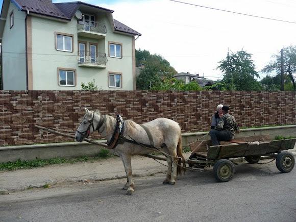 Турка. Гужовий транспорт
