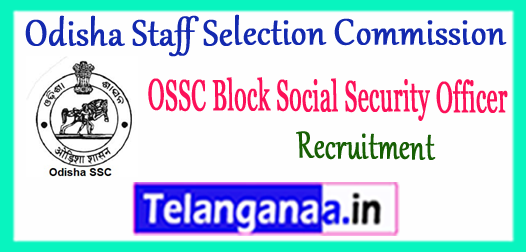 OSSC BSSO Odisha Staff Selection Commission Block Social Security Officer Recruitment 2017 Application