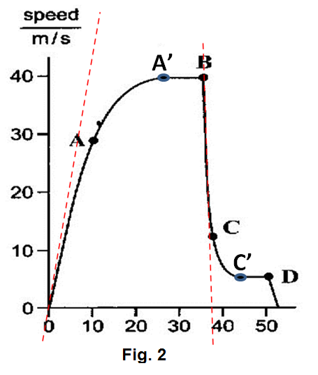 at this point the forces are balanced, hence he continues to fall at a  constant speed, it reaches terminal velocity (a') in fig  2