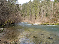 La riviere d'Ain