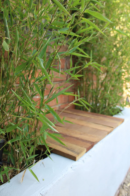 raised bed with wooden seating
