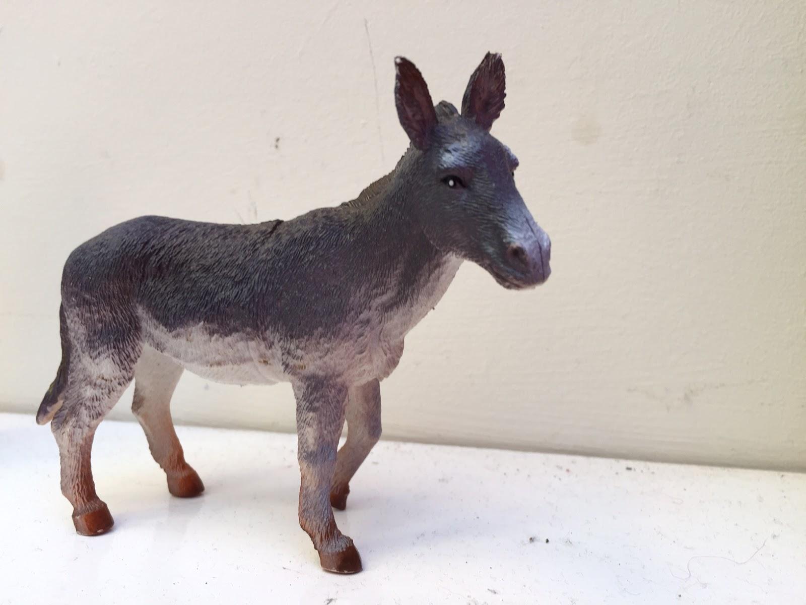 Thread and Thrift: Donkey Days