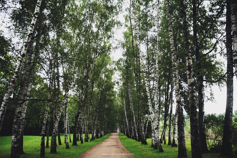фотограф,фотосъемка в москве,фотограф даша иванова,идеи для свадьбы,фотограф москва,фотосъемка в туле,путешествия по России,красивые места в России,тульская область,романцевские горы,красивые места в тульской области,небольшое путешествие по россии,путешествие на машине,природа России,красивая природа,красивые места,яная поляна,музей-усадьба ясная поляна,усадьба ясная поляна,усадьба,усадьба толстого