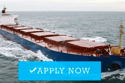 Employment for cook in bulk carrier