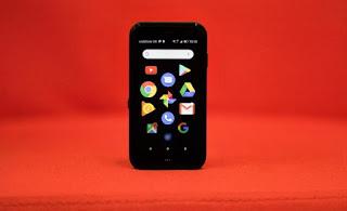 black palm phone screen