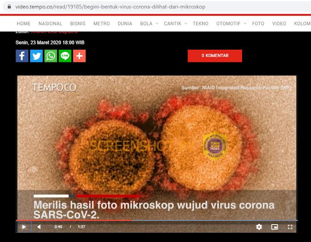 Gambar virus corona Asli