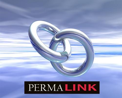 Custom Permalink URL pada Judul Artikel