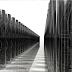 Απεδείχθη ότι το DNA μας είναι Υπολογιστής Συνδεδεμένος σε ένα Συμπαντικό Διαδίκτυο …