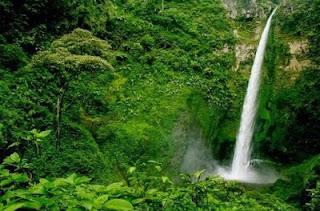 Air Terjun Coban Rondo Pilihan Tempat Wisata Air Terjun di Malang yang Alami dan Sejuk