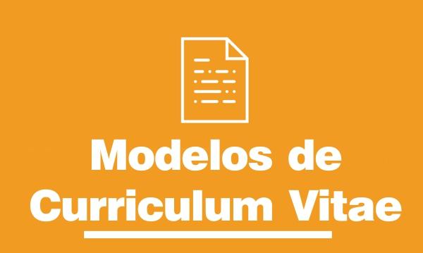 Modelos De Curriculo Vitae 2018 Vagas E Oportunidades