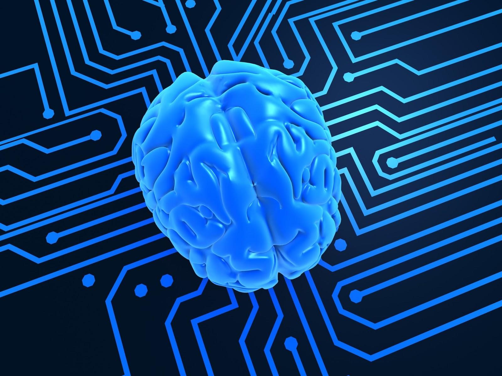 neurociencia y fisica cuantica