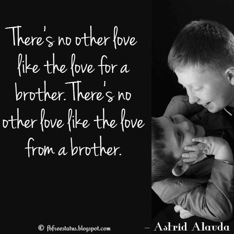 Brother Quote: There's no other love like the love for a brother. There's no other love like the love from a brother. Astrid Alauda