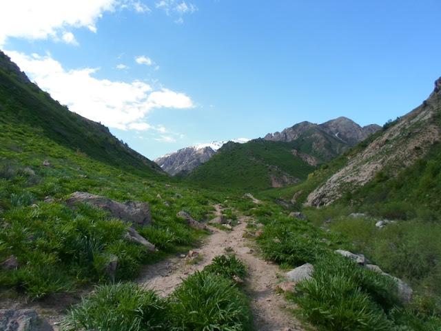 Перевал Кумкаякутал, ущелье Семиганч, Ромит, горы Таджикистана - фото-обзор похода