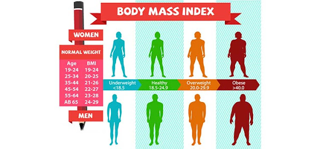 Semak BMI Online