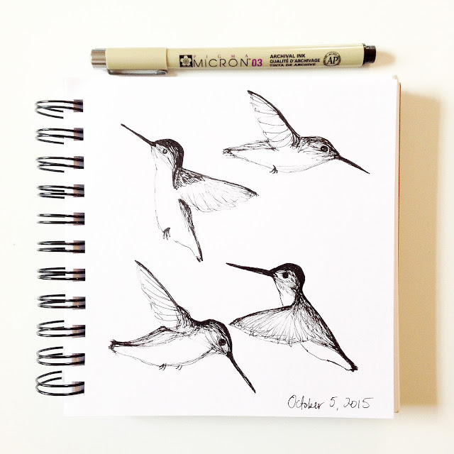 sketchbooks, daily sketchbook, drawing, sketching, hummingbirds, Anne Butera, My Giant Strawberry