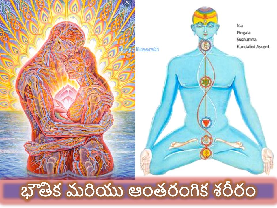 భౌతిక మరియు ఆంతరంగిక శరీరం - Our physical and intellectual body