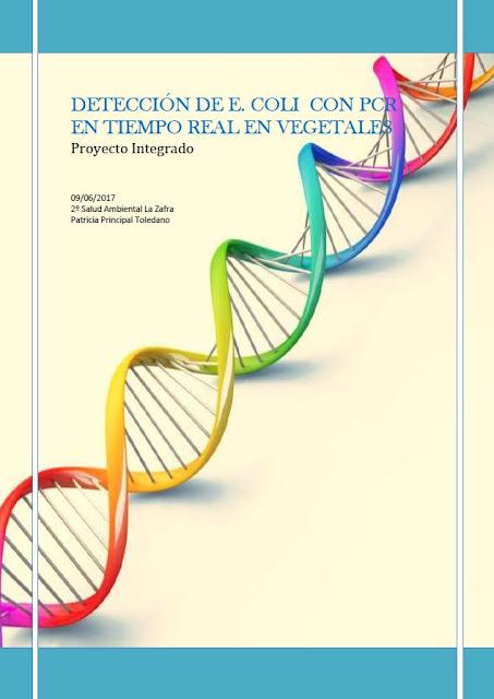 E. coli con PCR