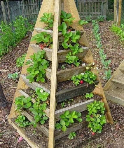 ideias jardins pequenos : ideias jardins pequenos: : Ideias e Apontamentos de Decoração para Pequenos Jardins