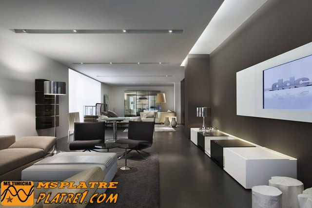 Decoration platre plafond for Spot plafond salon