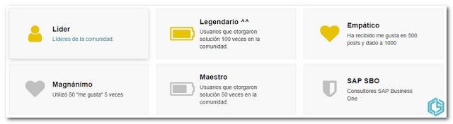 Distintivos de Gera Mendez - Consultoria-SAP