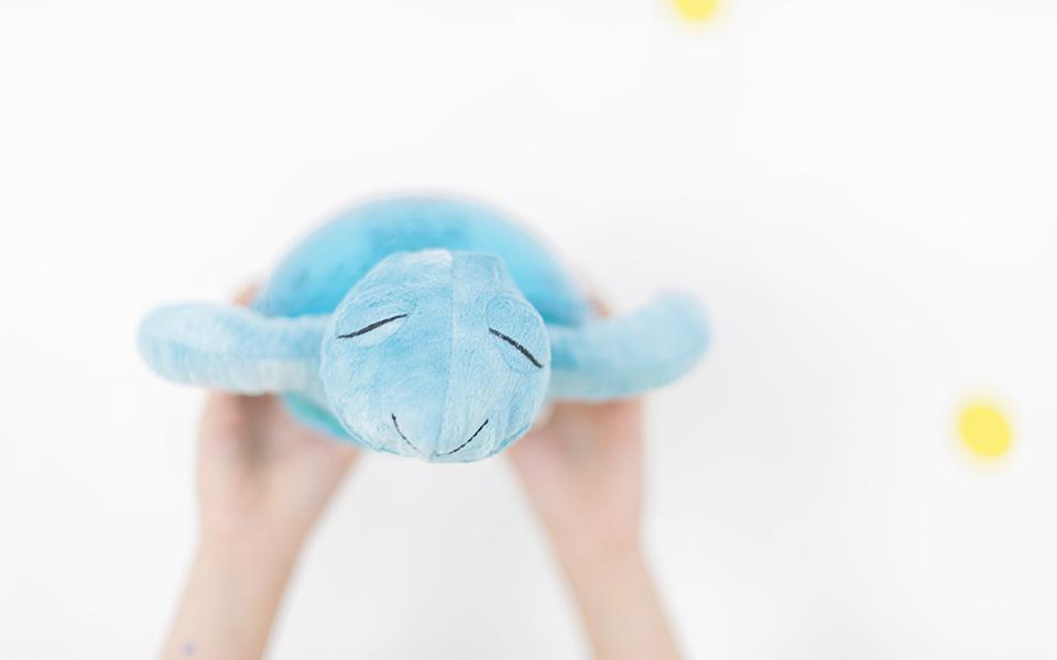 Tranquil Turtle de Cloudb