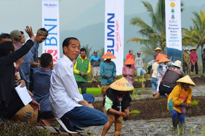Akting Dengan Petani Tapi Beras Tetap Impor, Pengamat: Pencitraan Jokowi Sudah Tak Laku