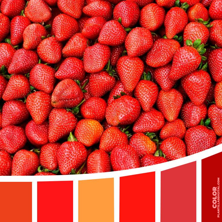 color_475