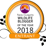 Wildlife Blogger of the Year Competition