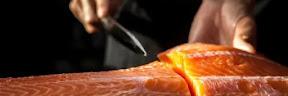 Cara Mengolah Ikan Salmon Yang Benar, Jangan Sampai Salah Ya!