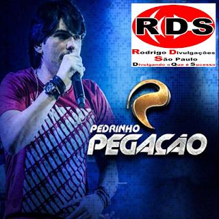 Baixar – Pedrinho Pegação – Arapiraca – AL – 25.09.2016 – Rep. Novo!!