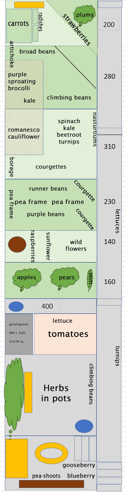 Allotment Garden Plot Layout
