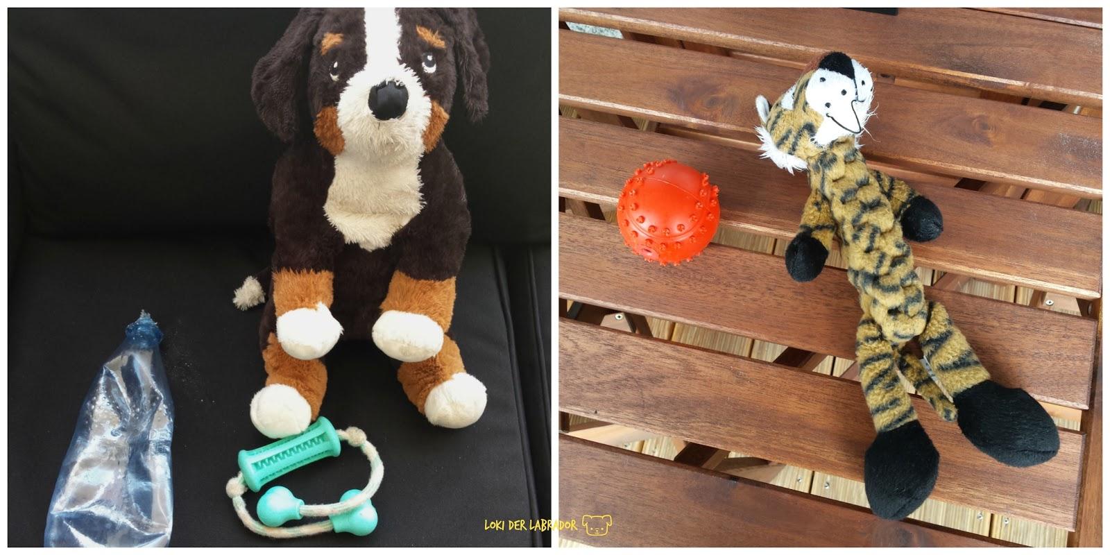 Fotocollage Hundespielzeug