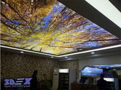 3D stretch ceiling, 3d ceiling design, 3d ceiling art, modern ceiling 2018