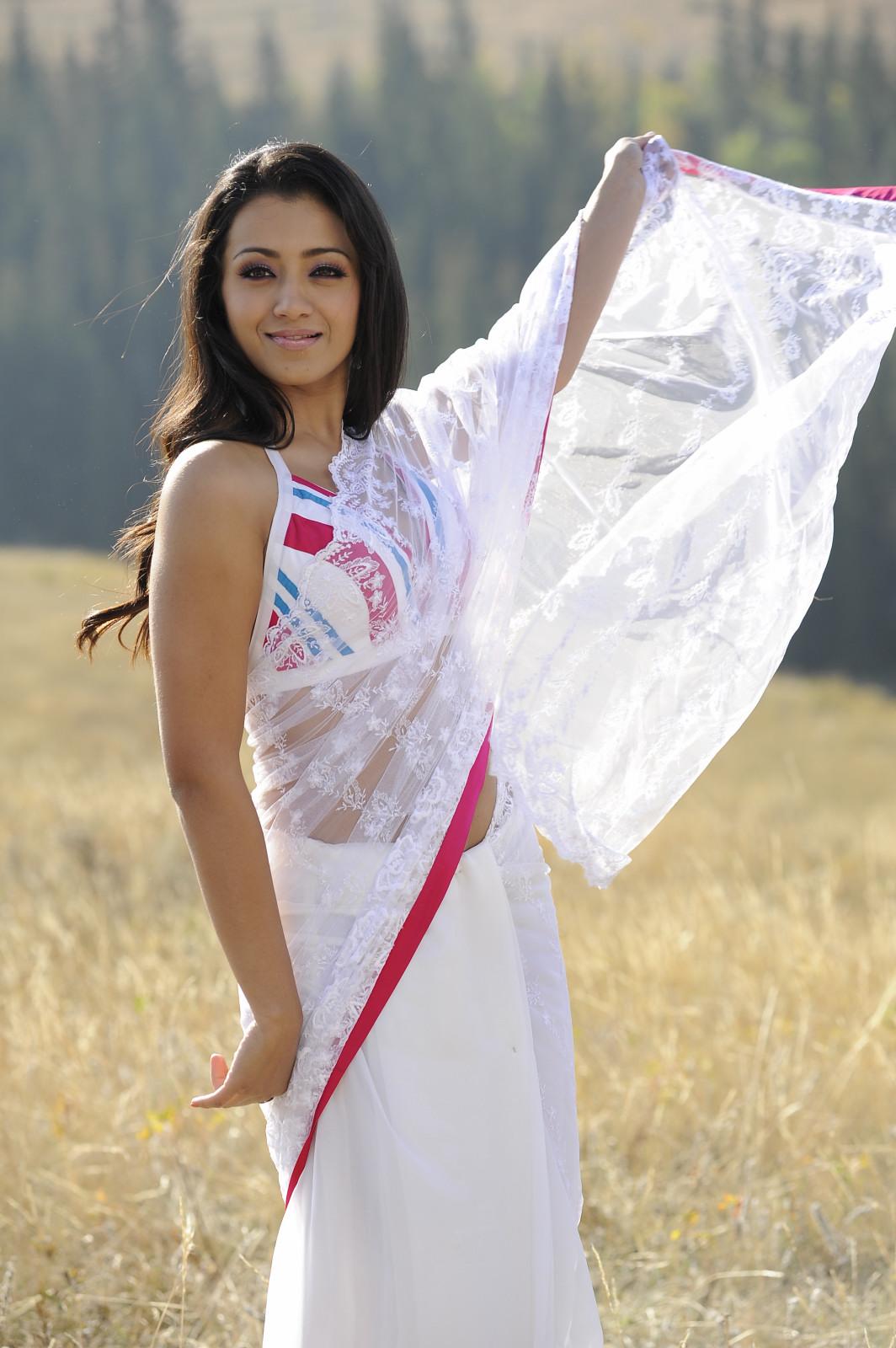 Trisha Latest Saree Stills Image Picture  Telugu Songs -6875