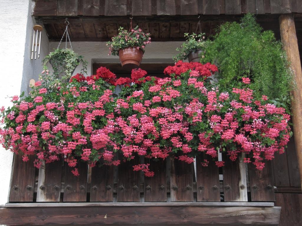 Blumen Fensterbank Fensterbank Blumenkasten Von Rephorm In Shop