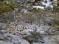 Snijeg Vidova gora Nerežišća slike otok Brač Online