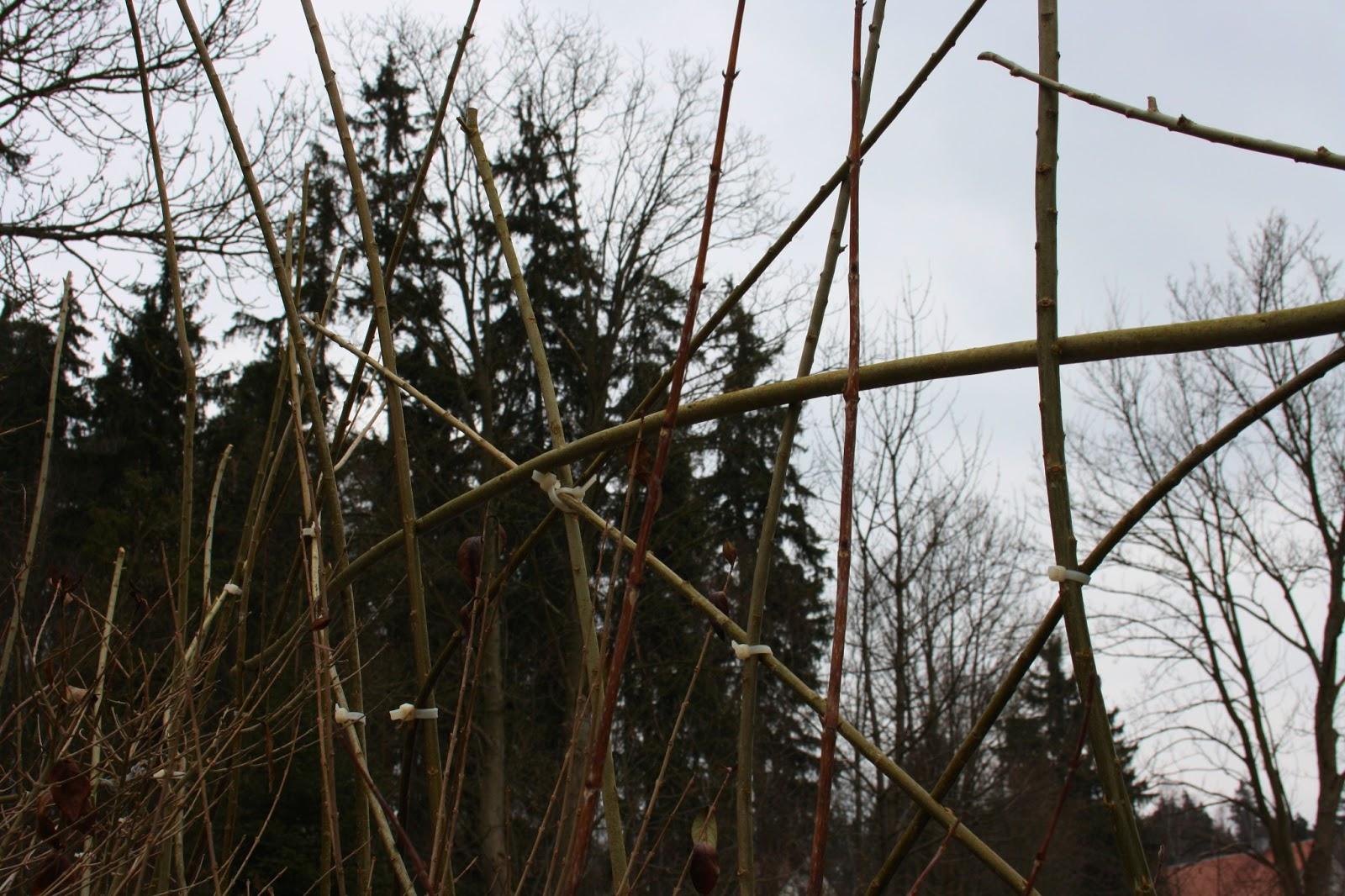 Wildes Gartenglück Lebender Weidenzaun