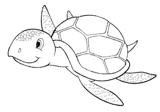Cute Sea Turtle Coloring Sheet Images