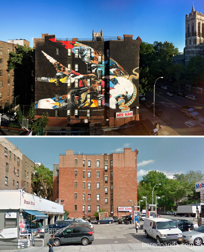 10+ Incredible Before & After Street Art Transformations That'll Make You Say Wow - Swallow-Tailed Kite, New York City, NY, USA