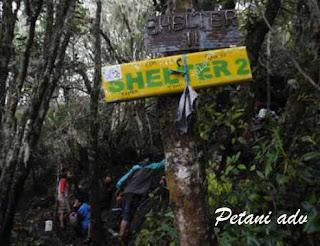Pendakian Gunung Dempo || Pagar Alam