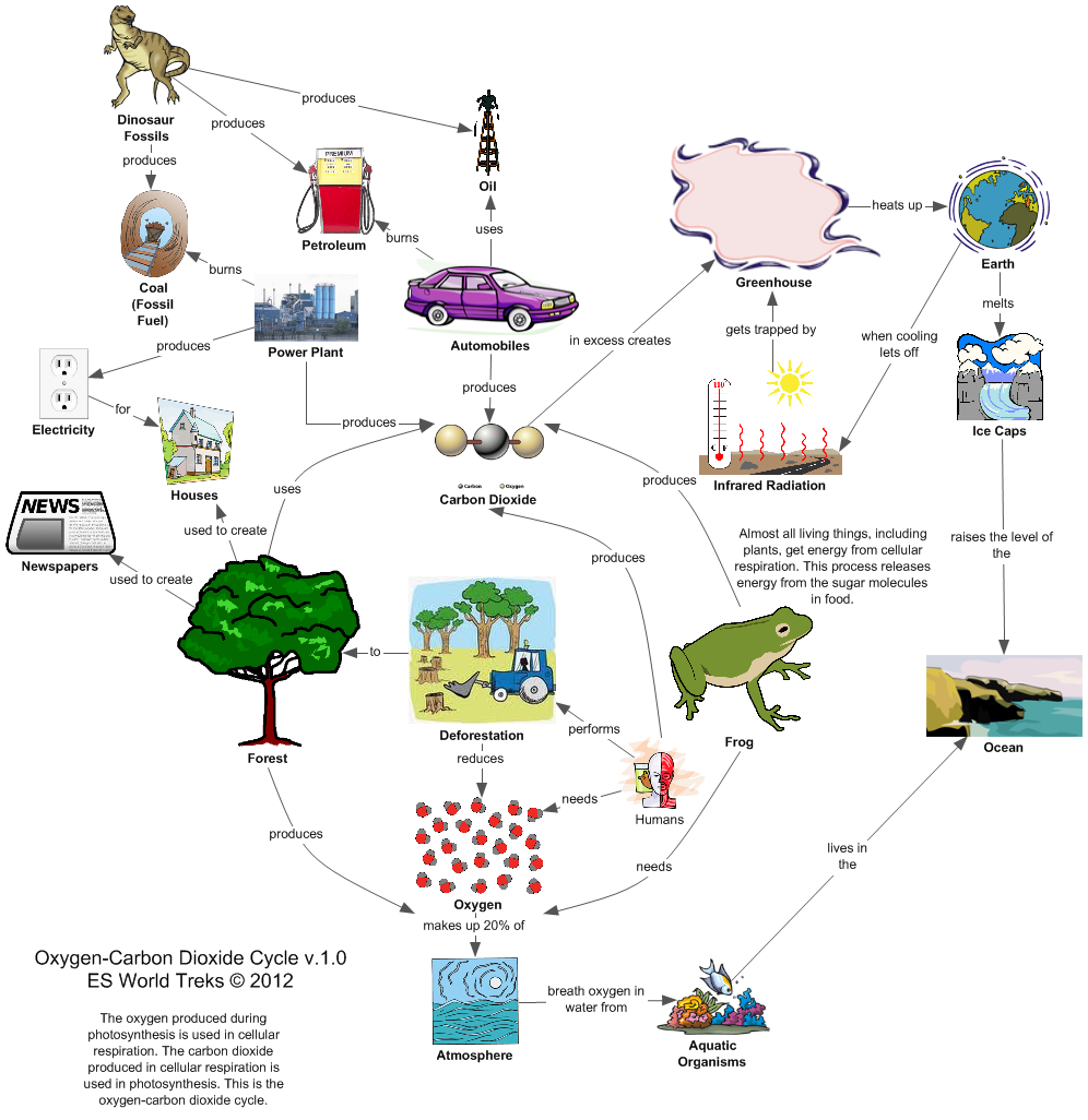 Malik gk power carbon oxygen cycle the movement of carbon and oxygen between the atmosphere oceansplantsanimals and the ground is called the carbon oxygen cycle ccuart Choice Image