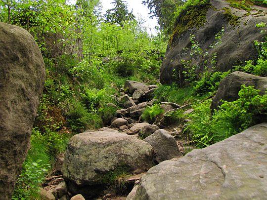 Szlak podejściowy na przełęcz między Szczelińcami.