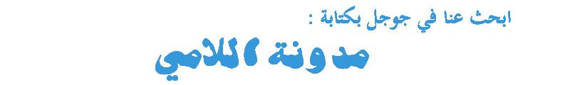 مدونة اللامي