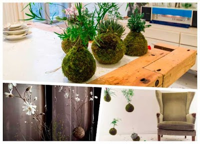 Crear nuestro propio kokedama o plantas sin maceta