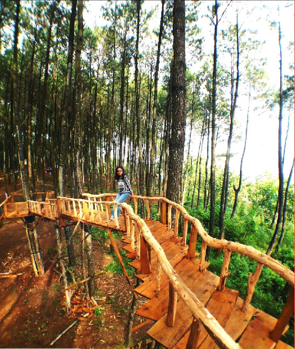 42 Tempat Wisata di Jogja Terbaru dan Terpopuler yang Wajib Dikunjungi